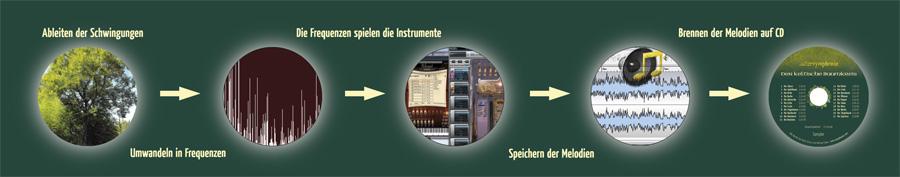 natursymphonie - Home-Ableitung-bis-Symphonie