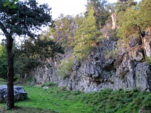 natursymphonie - Kraftort Naturdenkmal Pfahl Viechtach