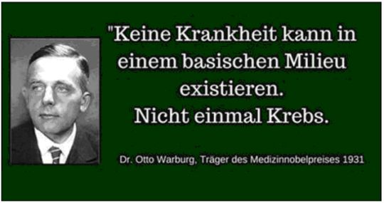 natursymphonie - Die Erde ist eine Scheibe - Otto Warburg